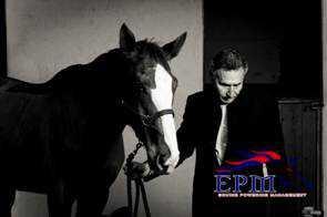 cavalli e coaching
